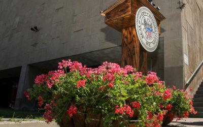Business Blooms in Downtown Binghamton
